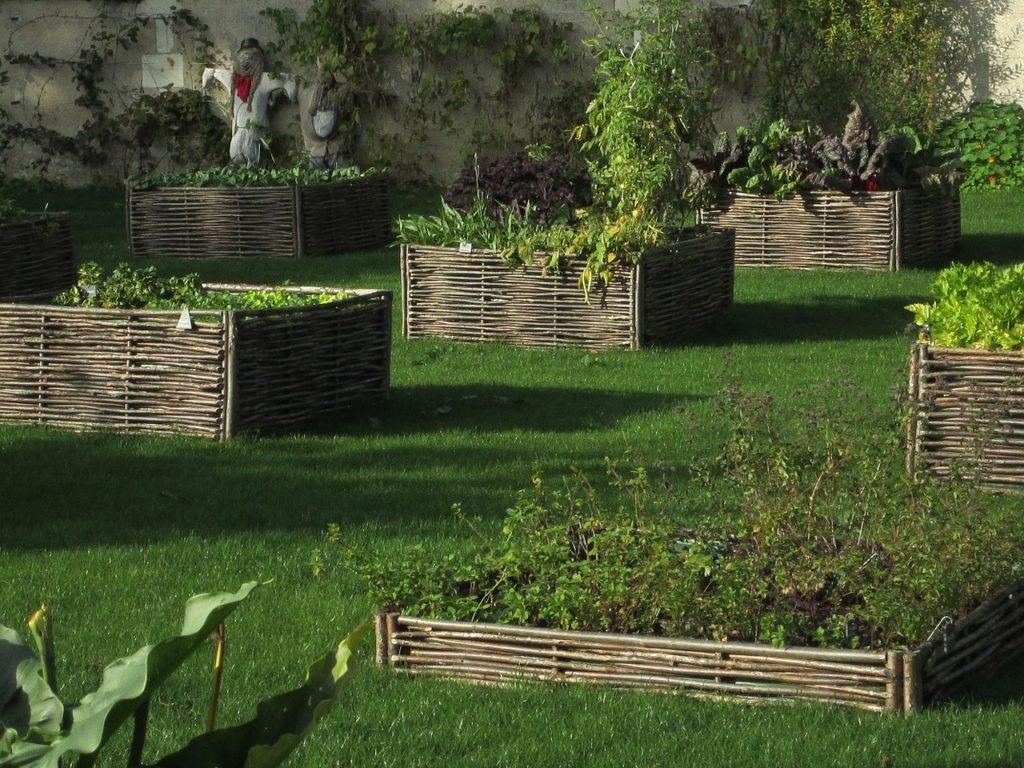 Gartengestaltung und Rasenpflege